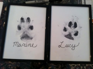 Framed Pet Paw Prints to go with framed baby feet hand prints