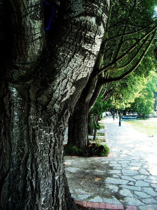 Sidewalk in Kastoria... Near the lake