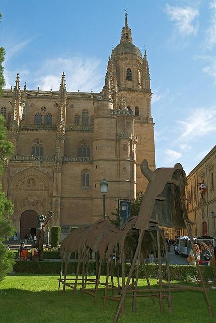 Catedral de Salamanca. The Cathedral of Salamanca.