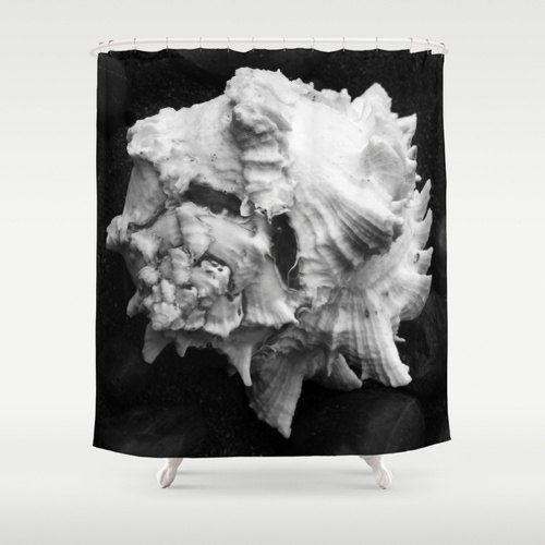 Shell No.1 - Shower Curtain - Nature - Photography - Ocean Decor - Beach Decor - Cottage Chic - Spring - Summer - Black and White