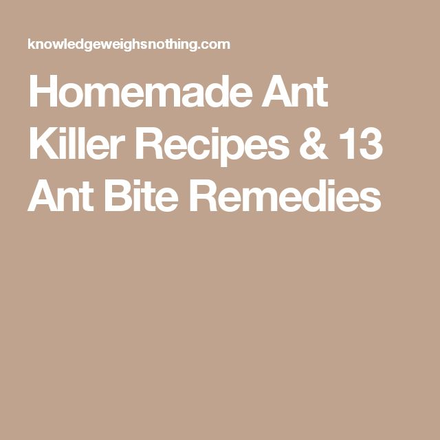 Homemade Ant Killer Recipes & 13 Ant Bite Remedies