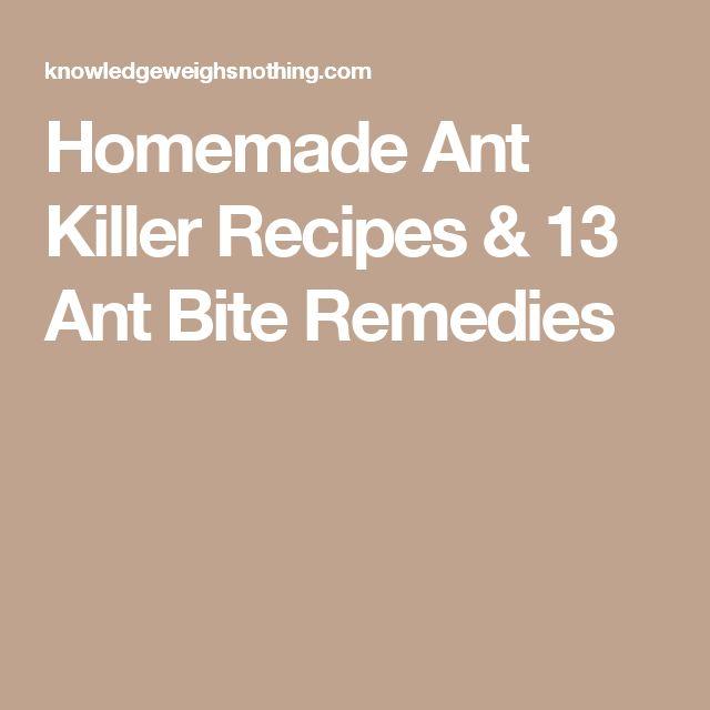 Homemade Ant Killer Recipes & 13 Ant Bite Remedies