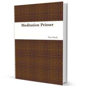 Free Download: Meditation Primer is a compilation of some of my favorite beginner to intermediate meditations and guided visualizations. These exercises are meant as an introduction to some of the basic techniques used in meditation and guided imagery. I personally use these techniques for relaxation and re-centering purposes. They are excellent as a method for stress relief and provide a good solid foundation for self or spiritual exploration. $0.00