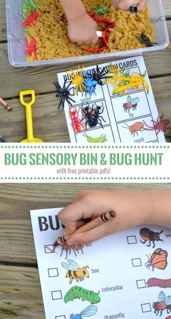 How to make a bug sensory bin with free printable bug identification cards and free printable bug hunt checklist #BackToPlay #ad