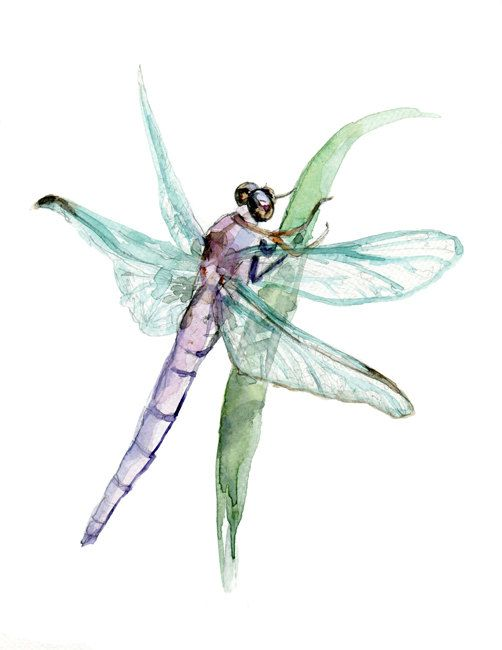 Dragonfly Original Watercolor Animal Painting. Zen drawing and paint on paper. Insect Libellule Watercolor Painting. 7 x 9.5 inch on Etsy, $55.75