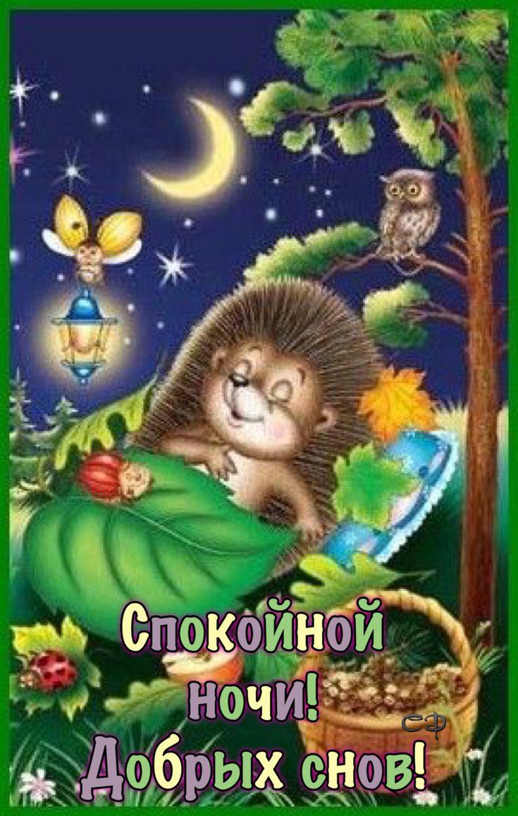 Любви, открытка спокойной ночи ежик