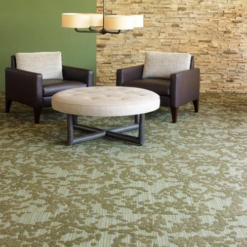 28 best flooring images on pinterest carpet rugs and carpets shaw affluence carpet tile 24 x 24 hospitality carpet tile ppazfo