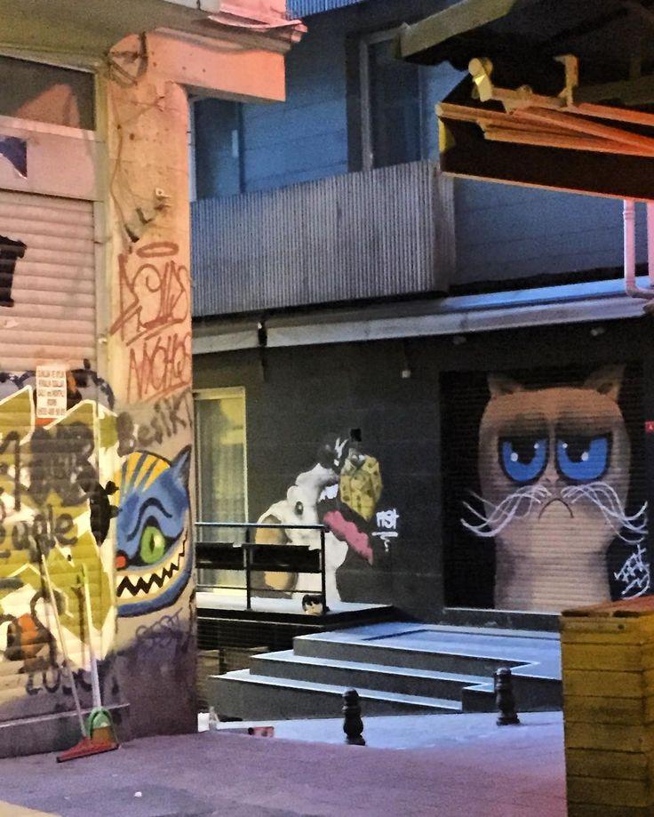Mutlu pazartesiler tabii öyle bişey çalışırken mümkünse  #kedi #catstagram #graffiti #streetart #istanbul #instagraffiti #wallart #streetphotography #instaturkey by sabihasabish