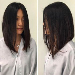 Straight Angled Long Bob Hairstyle                                                                                                                                                                                 More