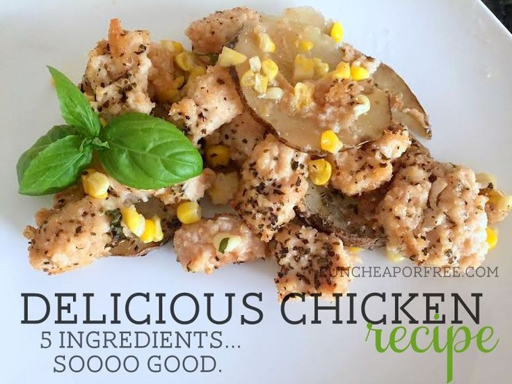 """delicious chicken"" a 5ingredient favorite recipe  fun"