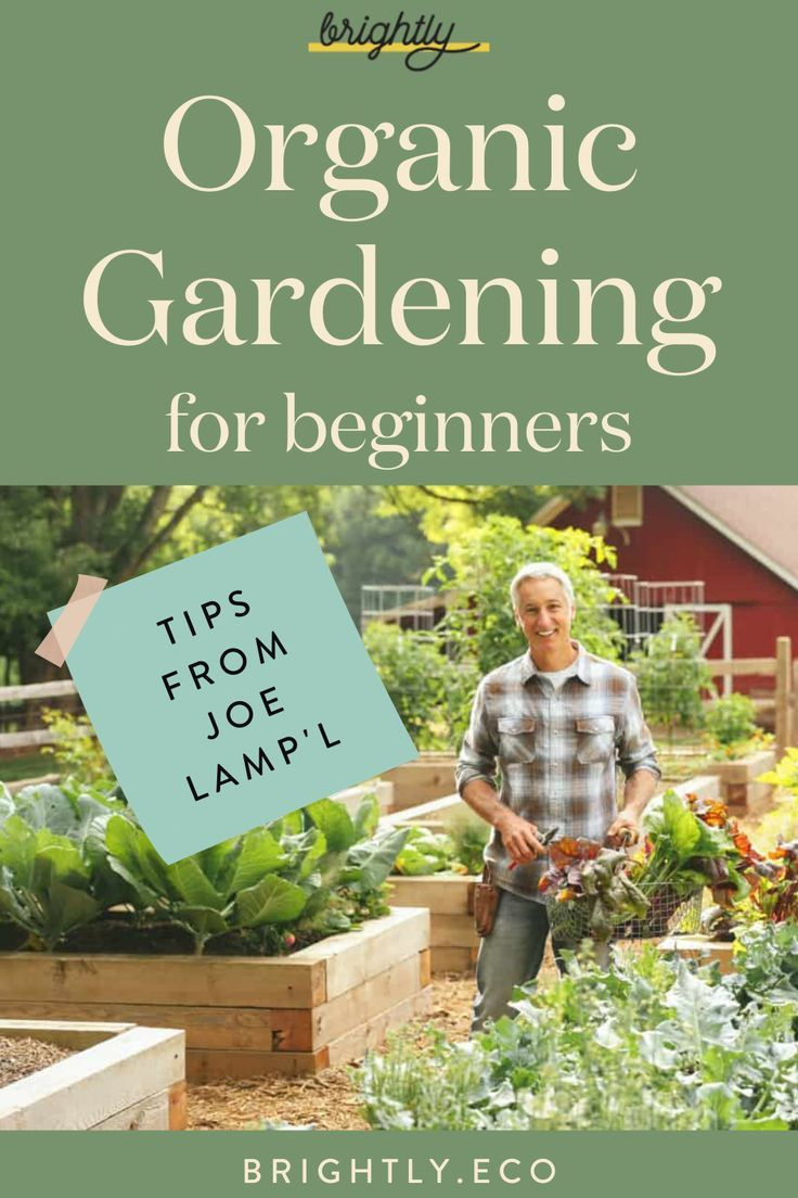 8b609894ca85008cad48979a1ab0721f - How Does Gardening Help The Environment