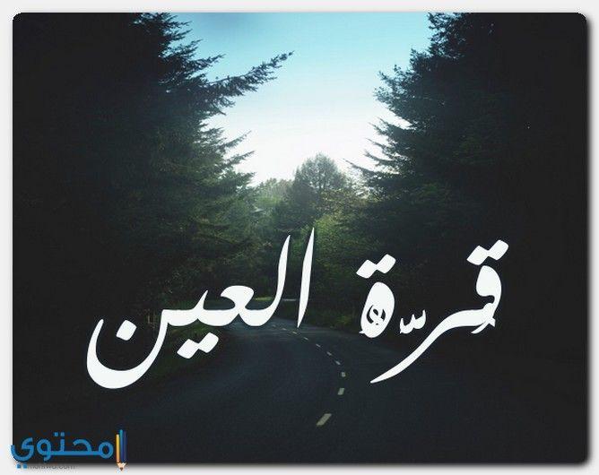 معنى اسم قرة العين Qurratulayn وحكم التسمية معاني الاسماء Qurratulayn اسم قرة العين Arabic Calligraphy Art Calligraphy
