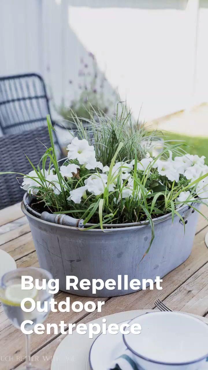 Bug repellent outdoor centrepiece video video
