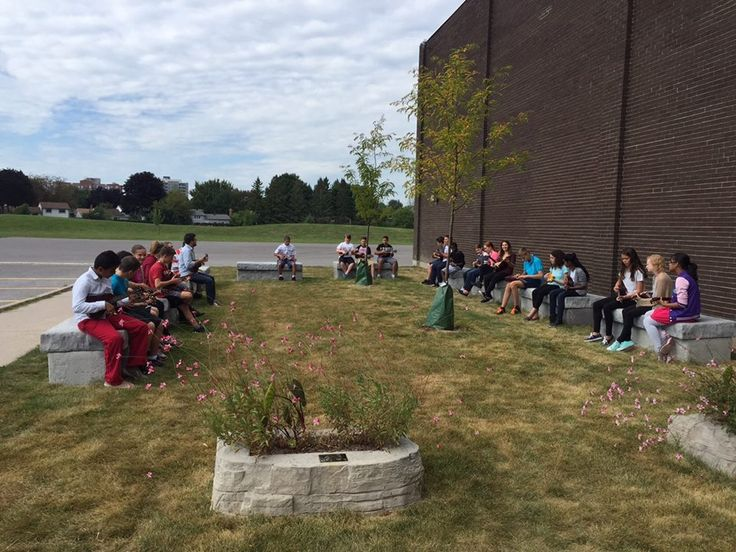 Reflecting in the FR outdoor classroom