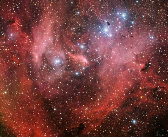The Running Chicken Em tradução literal, a nebulosa da Galinha Fugitiva fica próxima à constelação de Centauro. A primeira foto de alta resolução dela foi tirada em 1950, mas onde exatamente está a galinha na foto permanece um mistério... Foto: Wikicommons