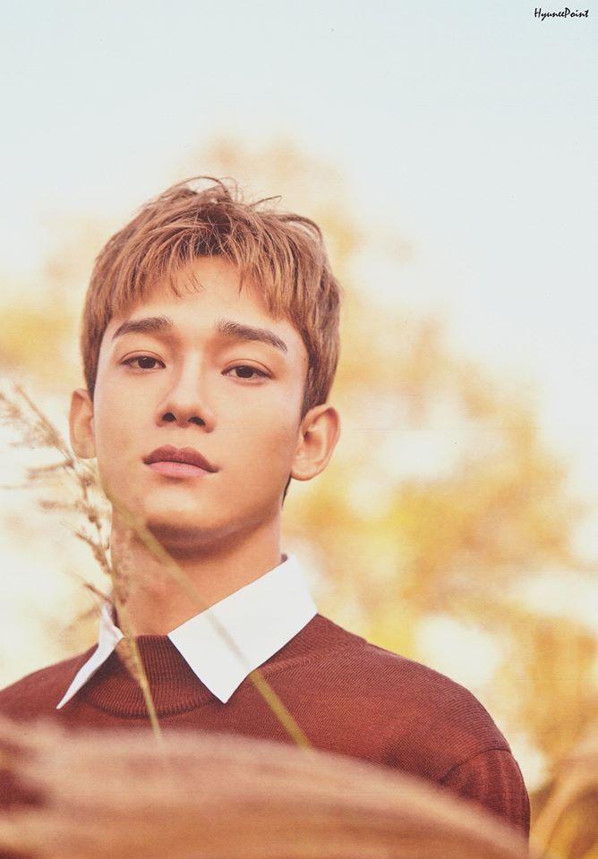 Chen Exo 2018 >> Scans 2018 Exo Nature Republic Baekhyun Sehun Dan Idol