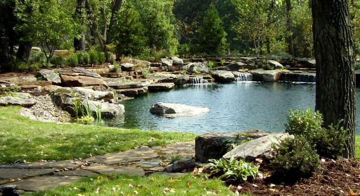 Natural Swimming Pool & Pond Photo Gallery - Design & Fabrication Services - TOTAL HABITAT