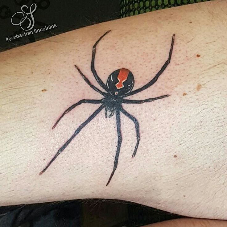 Another spider!  One on spiderman I forgot to post.  #s8stencilproducts #s8tattoo #s8tattoostencil #blueanchorstencilcreme #worldfamousink #worldfamousinks #ringmasterirons #dynamicblackink #lincolninktattoo #lincolninkchristchurch #lincolninktattoostudio  #spidertattoo #spidertattoos