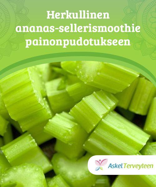 Herkullinen ananas-sellerismoothie painonpudotukseen Ananaksesta ja #selleristä tehty smoothie on helppo valmistaa. Näiden kahden aineosan #yhdistelmä auttaa pudottamaan painoa #tehokkaammin. #Laihduttaminen