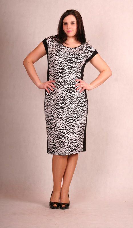 sukienki - Odzież - bluzki, sukienki, piżamy duże rozmiary - maxi XXL - tunika, sukienki dla puszystych