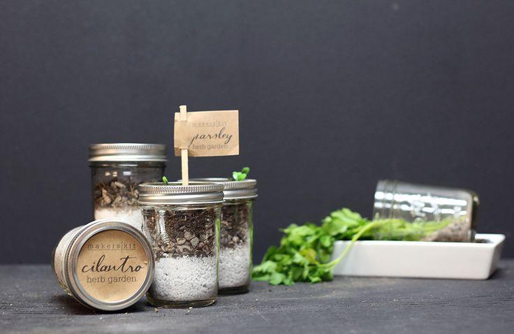 1000 Images About Indoor Gardening On Pinterest Gardens