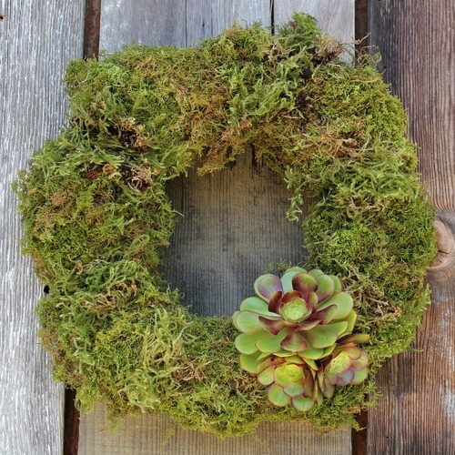 Moss Wreath with Succulent Bow / Flora Grubb Gardens