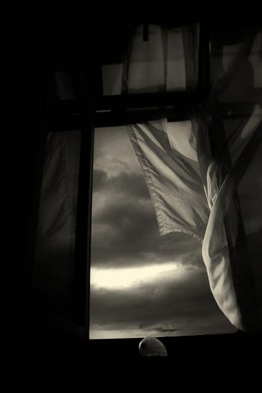 распахну настежь окна разбуди меня ветром
