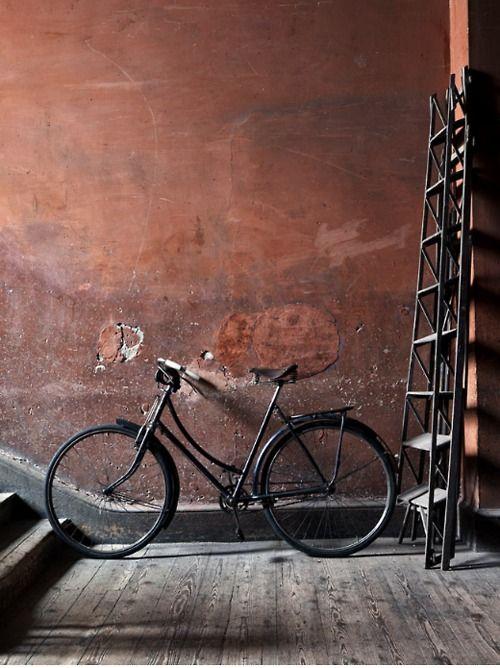bike and ladder