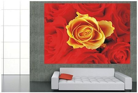 Czerwone i żółte róże - fototapeta - 254x183 cm  Gdzie kupić? www.eplakaty.pl