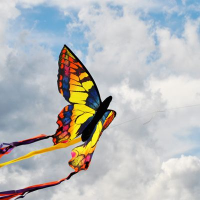 Butterfly Kite| Single Line Kite | Outdoor Activity Ideas for Kids