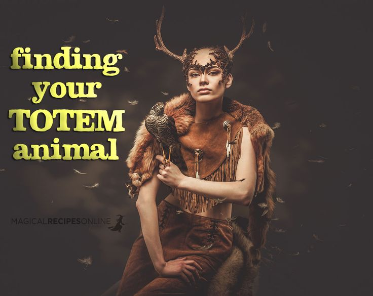 Magical Recipies Online | finding your totem animal