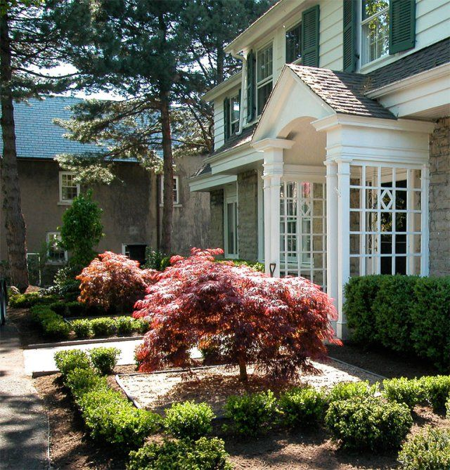 Formal garden with japanese maples garden with class pt for Formal japanese garden