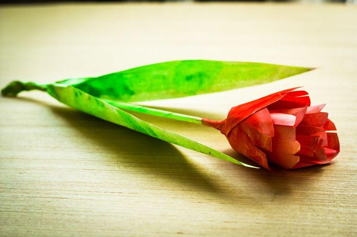 Тюльпан из бумаги. Как сделать тюльпан. How to make a paper Tulip