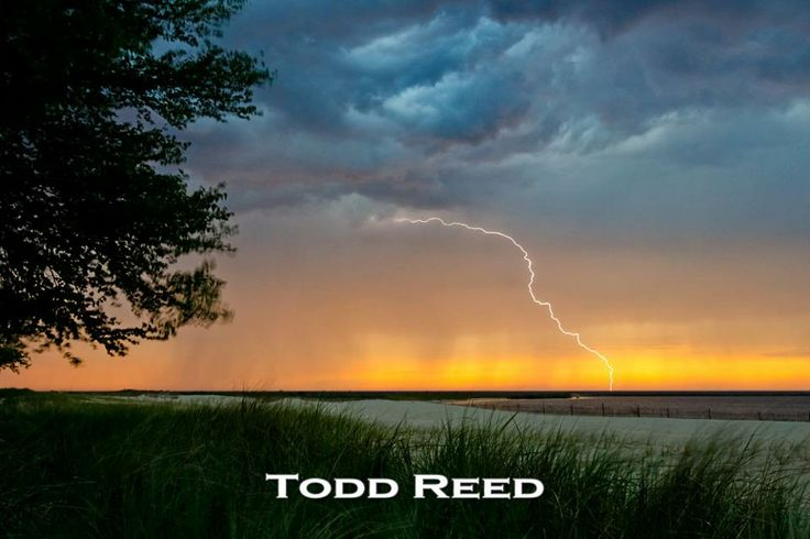 17 best images about todd brad reed ludington mi for Todd reed