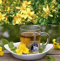 Receitas caseiras com plantas e ervas medicinais que curam e tratam várias doenças: Erva de São João, chá para depressão, hipérico