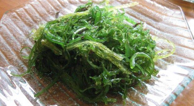 Investigadores de la Universidad Nacional estudian alga para combatir desnutrición