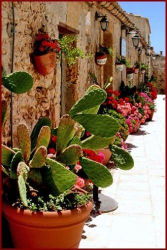 The most beautiful square Sicily!!!  Love!  @lindsayburka #Marzamemi,# Sicily - Italy