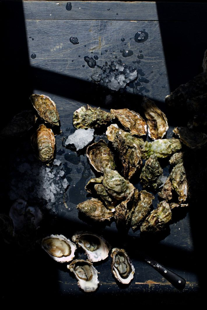Oysters in the afternoon