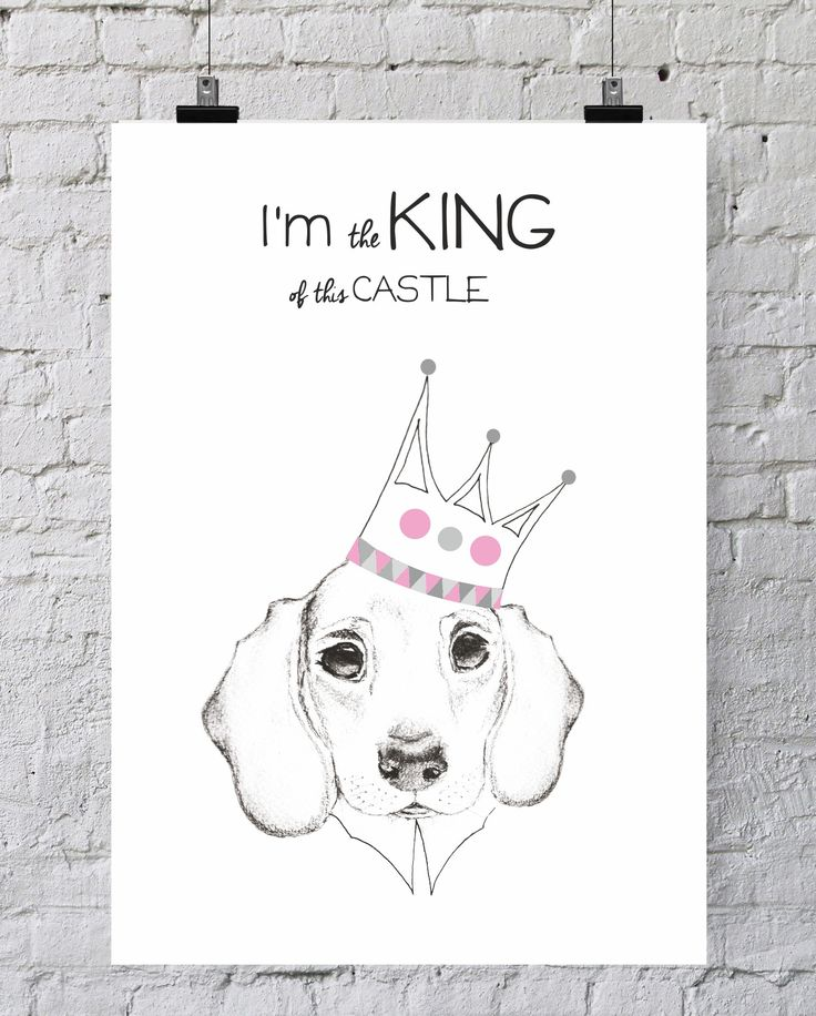 ILUSTRACJA  I'M KING OF THIS CASTLE