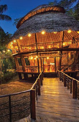 """Stay in a treehouse bungalow in Peru's Amazon Rainforest."""
