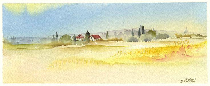 paesaggio grano giallo