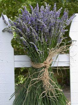 Homemade Lavender Linen Spray: 100 drops of lavender essential oil  1 1/2 ounces vodka  10 drops of spearmint essential oil  2 1/2 cups distilled water @theSerendipityCafe