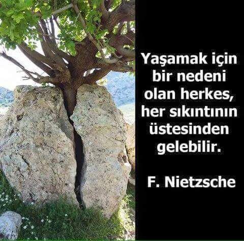 Yaşamak için bir nedeni olan herkes, her sıkıntının üstesinden gelebilir. - Friedrich Nietzsche #sözler #anlamlısözler #güzelsözler #manalısözler #özlüsözler #alıntı #alıntılar #alıntıdır #alıntısözler #şiir #edebiyat