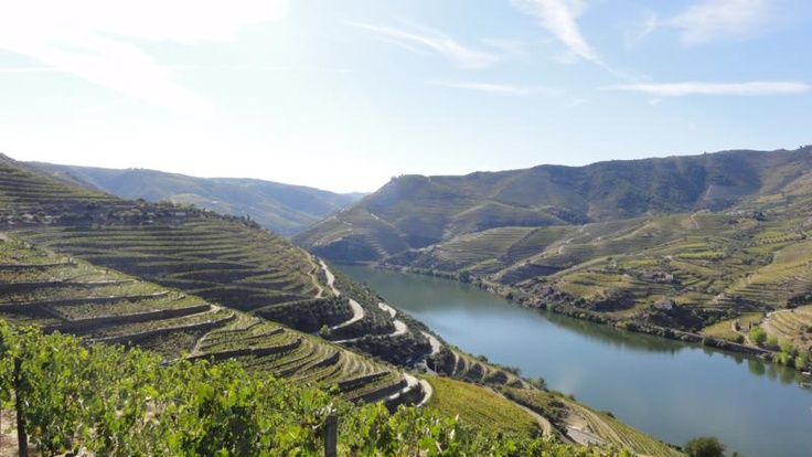 Top 10 wine destinations   Trips-collector.com