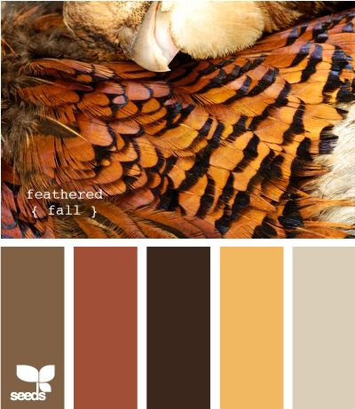 feathered fall: love the lightest tan paint color...not a white wall, but not too dark.