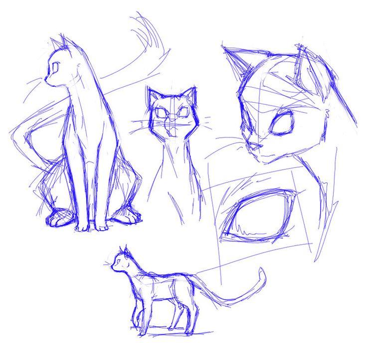Cat Sketch / Drawing