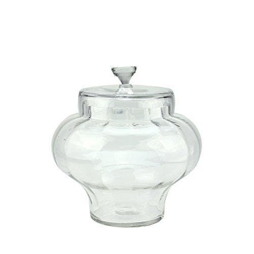 Felices Pascuas Collection 11 inch Transparent Segmented Glass Container with Lid