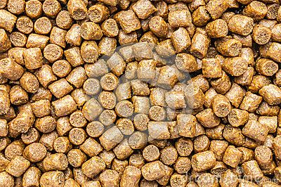 Industrial fish feed. Sinking extruded 6 mm diameter.
