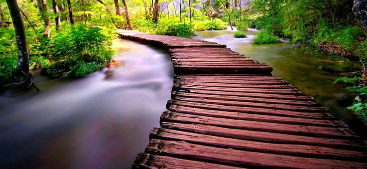 Ευτυχία είναι να λες αλήθειες χωρίς να γκρεμίζεις γέφυρες αγάπης.