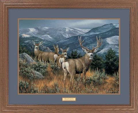 """The Mountain Muleys Mule DeerFramed Wildlife Art Printfeatures a breathtaking scene of a herd of mule deer with mountains in the distance. The 2"""""""" light oak-finished moulding and a double matting wi"""
